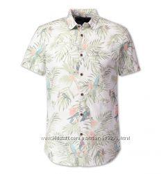 C&A рубашка коттон германия