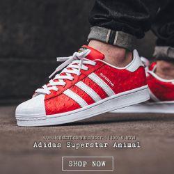 Помощь в покупке модной спортивной обуви знаменитых фирм  Италия