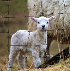 Электропастух для овец комплект