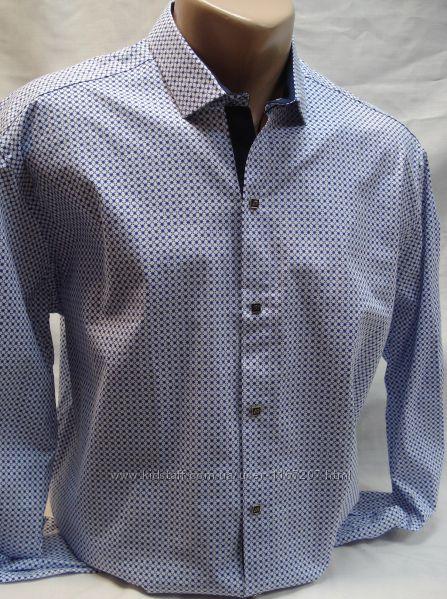 Рубашка мужская ANTONI ROSSI белая в мелкий рисунок 4XL,5XL