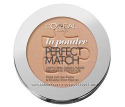 Пудра LOreal Perfect Match la Poudre Alliance Perfect, True Match