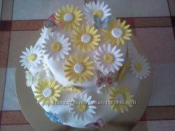 Торт с ромашками на заказ в Киеве