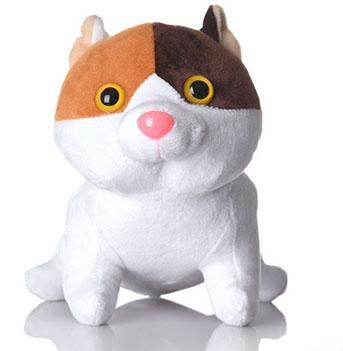 cat litter prices kroger