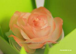 Свечи Трояндичка