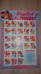 Алфавит украинский, английский алфавит, плакат картон