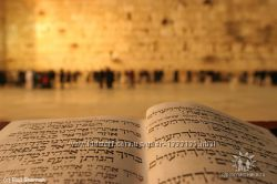 Репетитор по ивриту hebrew