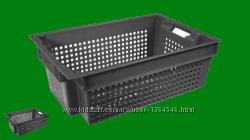 Виробництво пластикової тари для овочів купити на сайті promtara com ua