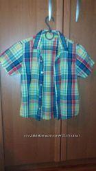 Стильные, яркие тениски   MARKS&SPENSER и Vintage Rebel на 7-8л, все в отли