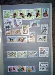 Продам марки Конго 1955. Рыбы.